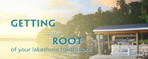 Getting to the root of your lakeshore frustrations