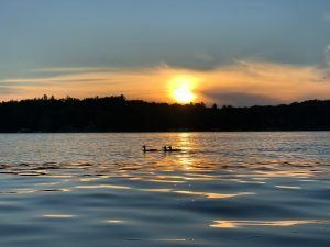 Lakes contain swimmer's itch.